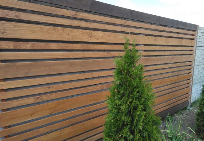 Дерев'яні паркани - 5