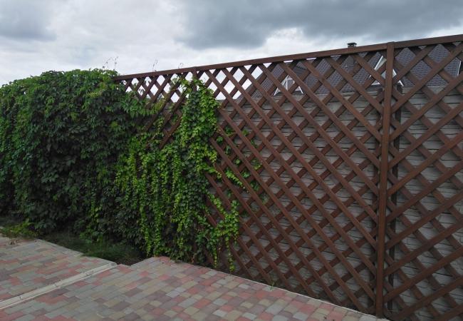 Дерев'яні паркани - 8